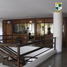 institucional (1)